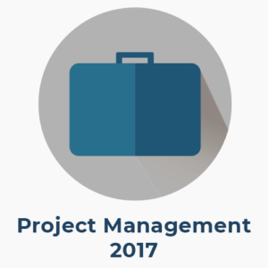 professional in project management